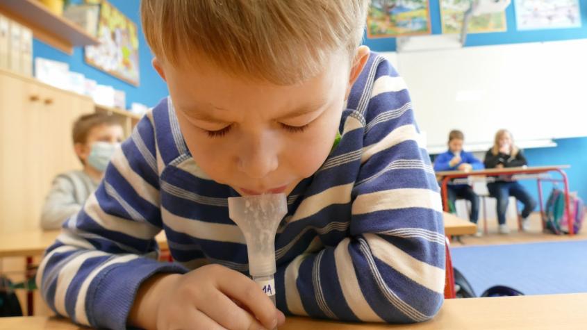 Ředitelé škol na Příbramsku doufají, že rodiče nebudou odmítat testování dětí