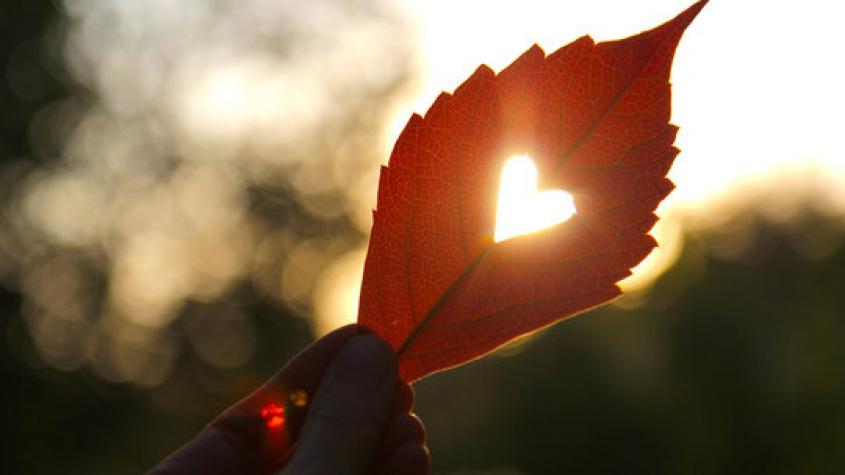 Jaké bude září? Meteorologové zveřejnili dlouhodobou předpověď