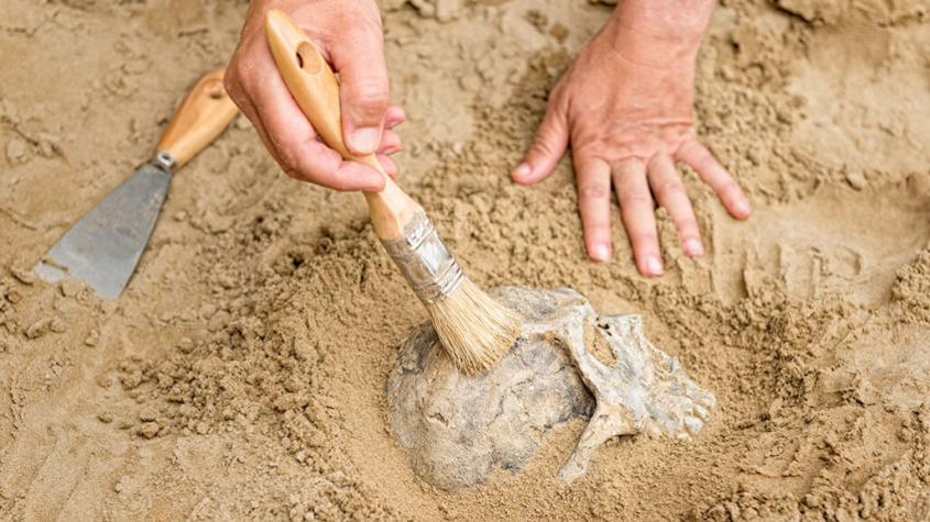 Archeologové našli na budované D4 u Čimelic pravěká sídliště i hroby