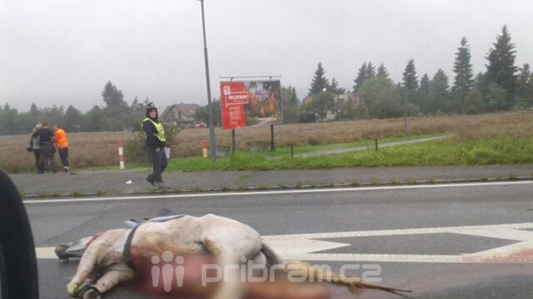 Sražený kůň u Mníšku a nehoda při cestě do Plzně