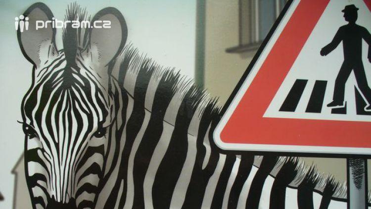 "Akce ""Zebra se za Tebe nerozhlédne!"""