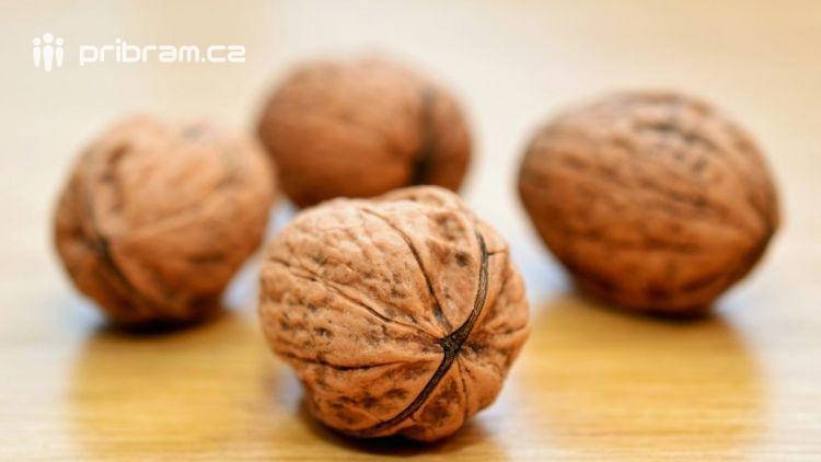 Ořešák a jeho plody využijete nejen na pečení buchet a do vánočního cukroví