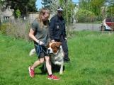 Zodpovědní majitelé psů si přijeli pro radu k psovodovi MP Dobříš