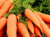 Farmářské trhy už tuto sobotu