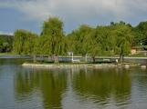 Voda na Nováku má výborné výsledky