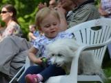 Pohoda pro rodiny, jejichž právoplatným členem je i pes