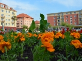 Náměstí 17. listopadu získává letní vizáž