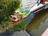 Závod dračích lodí na Sedlčanské přehradě