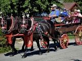 Bohatý sobotní program v Lázu přilákal desítky místních i přespolních návštěvníků