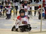 Další generace malých hokejistů vyzkoušela příbramský led