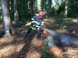 Aktuálně: Hasiči zasahují u požáru hrabanky v lesním porostu