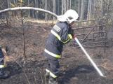 Aktuálně: Rozsáhlý požár lesa v nepřístupném terénu likvidují hasiči na Příbramsku