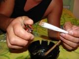 Pat a Mat kradli marihuanu