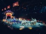 Většina Příbramáků by se nejspíš bez zvířat v cirkusech obešla