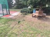 Projel plotem na pozemek školy