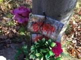 Nedaleko Drkolnova vzniká nelegální hřbitov pro zvířata