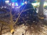 Aktuálně: Auto narazilo do stromu, řidiče vyprošťují hasiči