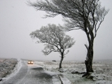 Meteorologové varují znovu před silným větrem