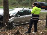 Auto narazilo do stromu, vážně zraněnou řidičku transportovala záchranka do nemocnice