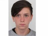 Policisté pátrají po šestnáctiletém chlapci