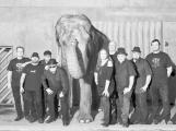 Sto zvířat v klubovém tažení s Elephantour