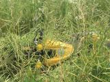 Aktuálně: Pro zraněného motorkáře přistává vrtulník, doprava na Skalce kolabuje