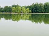 Příbram řeší, jak zlepšit kvalitu vody v Novém rybníku