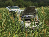 Renault sklidil kukuřici o několik týdnů dříve