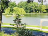 Na Novém rybníce byl zaznamenán vyšší obsah sinic