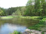 Kvalita vody ve středočeských koupalištích zůstává dobrá