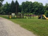 Příbram chce vytvořit psí park v lesoparku Litavka