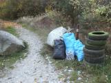 Bezděkovský lom: Vzácní čolci tu žijí mezi odpadky