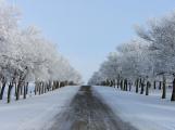 Meteorologové vydali varování před ledovkou, hrozí problémy v dopravě