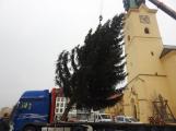 Příbramské náměstí ode dneška zdobí vánoční strom