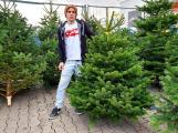Vánoční stromek pořídíme za tři stovky, ale také za patnáct set