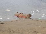 Pneumatiky, železo, plasty. Orlík kromě zatopených vesnic odhalil i hromady odpadu