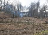 Čekalíkovský rybník a jeho okolí se začíná zvelebovat. Známe budoucí podobu