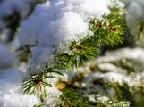 V noci na pátek napadne až 12 centimetrů sněhu