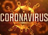 V souvislosti s koronavirem zemřeli další dva lidé