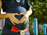 Lékaři chtějí vyšetřit 8000 těhotných žen na problémy se štítnou žlázou, testování začne v září