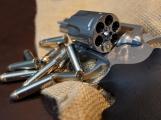 Senát schválil návrh na ústavní zakotvení práva bránit se zbraní