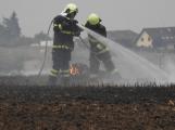 Deset hasičských jednotek likviduje požár pole u Podluh. Vítr hnal oheň do lesa