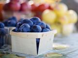 Sobotní farmářské trhy namíchají gastronomické i kulturní ingredience