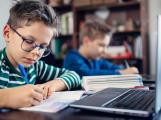 Online výuka může být pro mladou generaci hendikepem