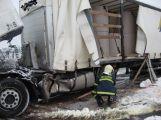 Nafta z kamionu znečistila dva rybníky