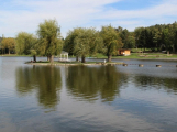 Kvalita vody v Novém rybníce byla letos dobrá, problémem byl parazit