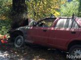 U Hluboše na Příbramsku zemřel řidič po nárazu do stromu (VIDEO)