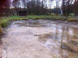 Kalník na Novém rybníku byl vyčištěn