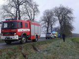 Řidička se lekla a narazila do stromu