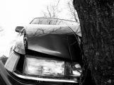 Řidič u Dlouhé Lhoty naboural do stromu, silnice je uzavřena